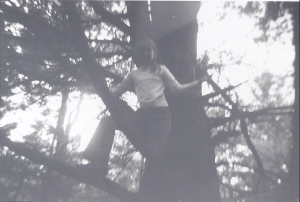 Me up tree at Camp Timber Trails in the summer of 1971.